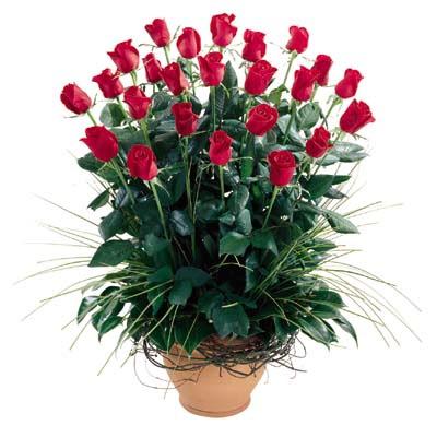 Rize çiçek , çiçekçi , çiçekçilik  10 adet kirmizi gül cam yada mika vazo