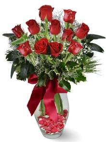 9 adet gül  Rize çiçek yolla , çiçek gönder , çiçekçi   kirmizi gül