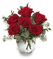 Vazo içerisinde 5 adet kırmızı gül  Rize yurtiçi ve yurtdışı çiçek siparişi