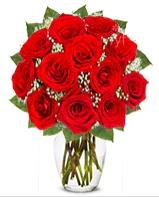 12 adet vazoda kıpkırmızı gül  Rize çiçekçi telefonları