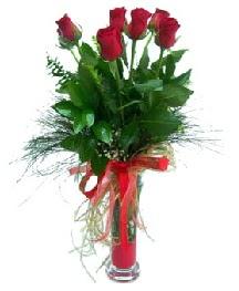 vazo içerisinde 5 kırmızı gül  Rize çiçek siparişi vermek