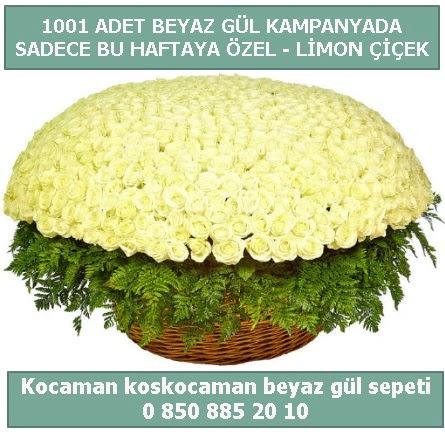 1001 adet beyaz gül sepeti özel kampanyada  Rize 14 şubat sevgililer günü çiçek
