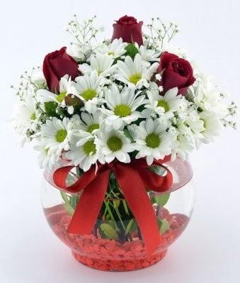 Fanusta 3 Gül ve Papatya  Rize çiçek yolla , çiçek gönder , çiçekçi