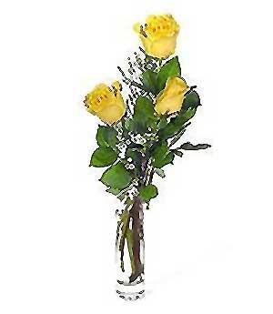 Rize çiçek gönderme sitemiz güvenlidir  3 adet kalite cam yada mika vazo gül