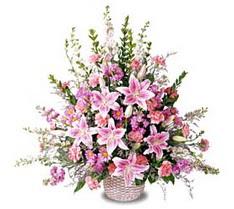 Rize online çiçekçi , çiçek siparişi  Tanzim mevsim çiçeklerinden çiçek modeli