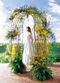 Rize çiçek yolla , çiçek gönder , çiçekçi   güller ve mevsim çiçegi