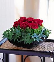 Rize online çiçekçi , çiçek siparişi  10 adet kare mika yada cam vazoda gül tanzim