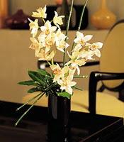 Rize İnternetten çiçek siparişi  cam yada mika vazo içerisinde dal orkide