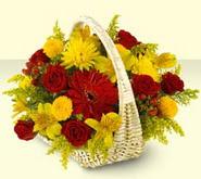 Rize ucuz çiçek gönder  sepette mevsim çiçekleri