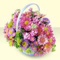 Rize online çiçek gönderme sipariş  bir sepet dolusu kir çiçegi  Rize 14 şubat sevgililer günü çiçek