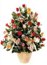 91 adet renkli gül aranjman   Rize 14 şubat sevgililer günü çiçek