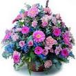 karisik mevsim kir çiçekleri  Rize 14 şubat sevgililer günü çiçek