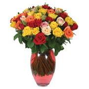 51 adet gül ve kaliteli vazo   Rize 14 şubat sevgililer günü çiçek
