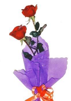 2  adet kirmizi gül buketi   Rize çiçek mağazası , çiçekçi adresleri