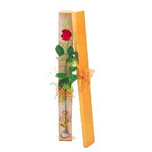 ince  kutuda  1  gül   Rize anneler günü çiçek yolla