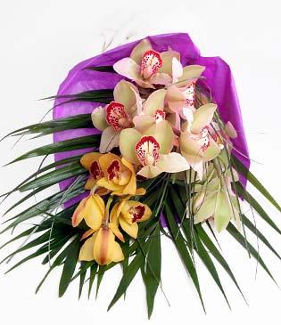 Rize çiçek satışı  1 adet dal orkide buket halinde sunulmakta