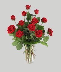 Rize çiçek satışı  11 adet kirmizi gül vazo halinde