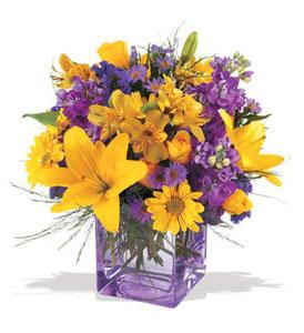 Rize çiçekçiler  cam içerisinde kir çiçekleri demeti