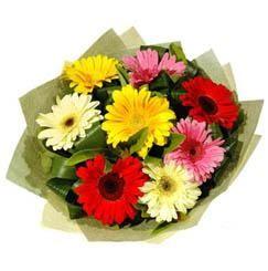 9 adet karisik gerbera demeti  Rize çiçekçiler