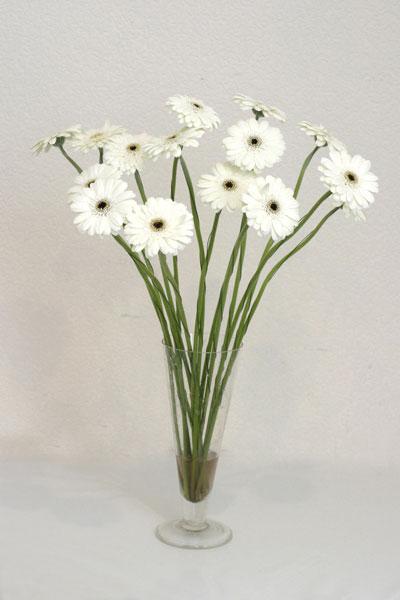 Rize çiçekçiler  cam vazo içerisinde 17 adet sade gerbera