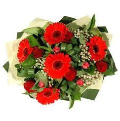 Rize kaliteli taze ve ucuz çiçekler   5 adet kirmizi gül 5 adet gerbera demeti