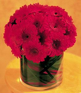 Rize kaliteli taze ve ucuz çiçekler  23 adet gerbera çiçegi sade ve sik cam içerisinde
