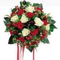 Rize kaliteli taze ve ucuz çiçekler  6 adet kirmizi 6 adet beyaz ve kir çiçekleri buket