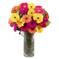 KARISIK GERBERALARDAN CAM VAZO TANZIMI  Rize çiçek siparişi vermek