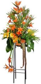 Rize online çiçekçi , çiçek siparişi  perförje tanzimi dügün nikah ve açilislara