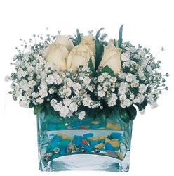 Rize yurtiçi ve yurtdışı çiçek siparişi  mika yada cam içerisinde 7 adet beyaz gül