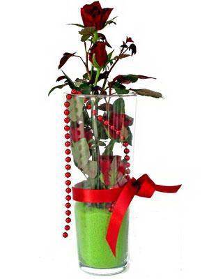 Rize çiçek gönderme  Cam yada mika içerisinde 9 adet kirmizi gül - sevdiklerinize özel