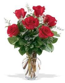 Rize 14 şubat sevgililer günü çiçek  7 adet kirmizi gül cam yada mika vazoda sevenlere