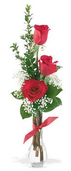 Rize çiçek satışı  mika yada cam vazoda 3 adet kirmizi gül