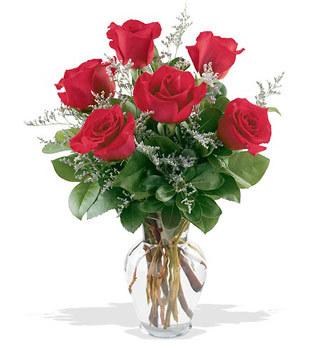 Rize çiçek satışı  cam yada mika vazoda 6 adet kirmizi gül