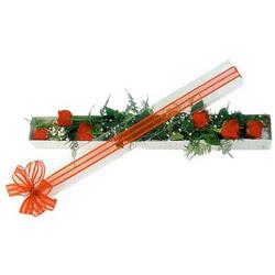 Rize online çiçekçi , çiçek siparişi  6 adet kirmizi gül kutu içerisinde