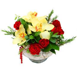 Rize hediye sevgilime hediye çiçek  1 adet orkide 5 adet gül cam yada mikada