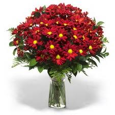 Rize anneler günü çiçek yolla  Kir çiçekleri cam yada mika vazo içinde