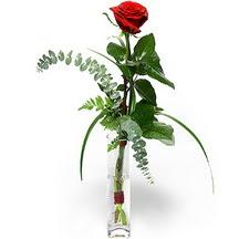 Rize ucuz çiçek gönder  Sana deger veriyorum bir adet gül cam yada mika vazoda