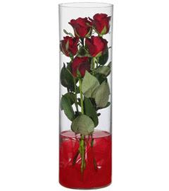 cam içerisinde 7 adet kirmizi gül  Rize İnternetten çiçek siparişi