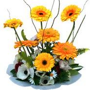 camda gerbera ve mis kokulu kir çiçekleri  Rize çiçek online çiçek siparişi