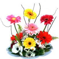 Rize güvenli kaliteli hızlı çiçek  camda gerbera ve mis kokulu kir çiçekleri