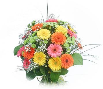 13 adet gerbera çiçegi buketi  Rize çiçek gönderme
