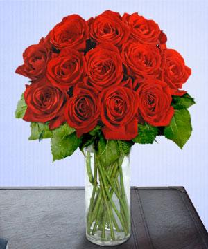 Anneme 12 adet cam içerisinde kirmizi gül  Rize online çiçekçi , çiçek siparişi