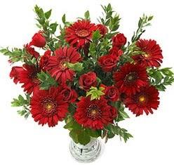 5 adet kirmizi gül 5 adet gerbera aranjmani  Rize güvenli kaliteli hızlı çiçek