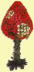 Rize hediye sevgilime hediye çiçek  dügün açilis çiçekleri  Rize çiçek siparişi sitesi