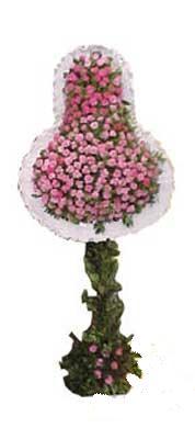 Rize kaliteli taze ve ucuz çiçekler  dügün açilis çiçekleri  Rize çiçek gönderme sitemiz güvenlidir