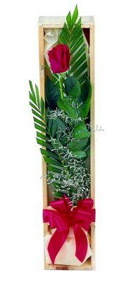 1 adet kutuda kirmizi gül  Rize 14 şubat sevgililer günü çiçek