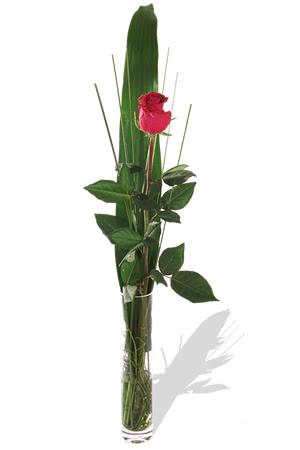 1 adet cam vazo içerisinde kirmizi gül  Rize çiçek mağazası , çiçekçi adresleri