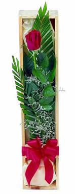Sade ve gösterisli kutu içerisinde tek gül  Rize yurtiçi ve yurtdışı çiçek siparişi