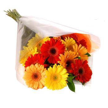 Karisik renklerde gerbera buketi  Rize çiçek satışı